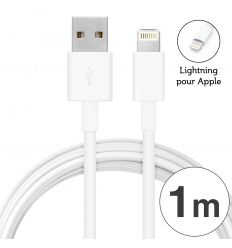 Cable USB Lightning 2A pour Apple IPhone / iPad - Blanc