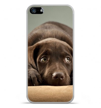 Coque en silicone Apple IPhone 5 / 5S - Chiot marron