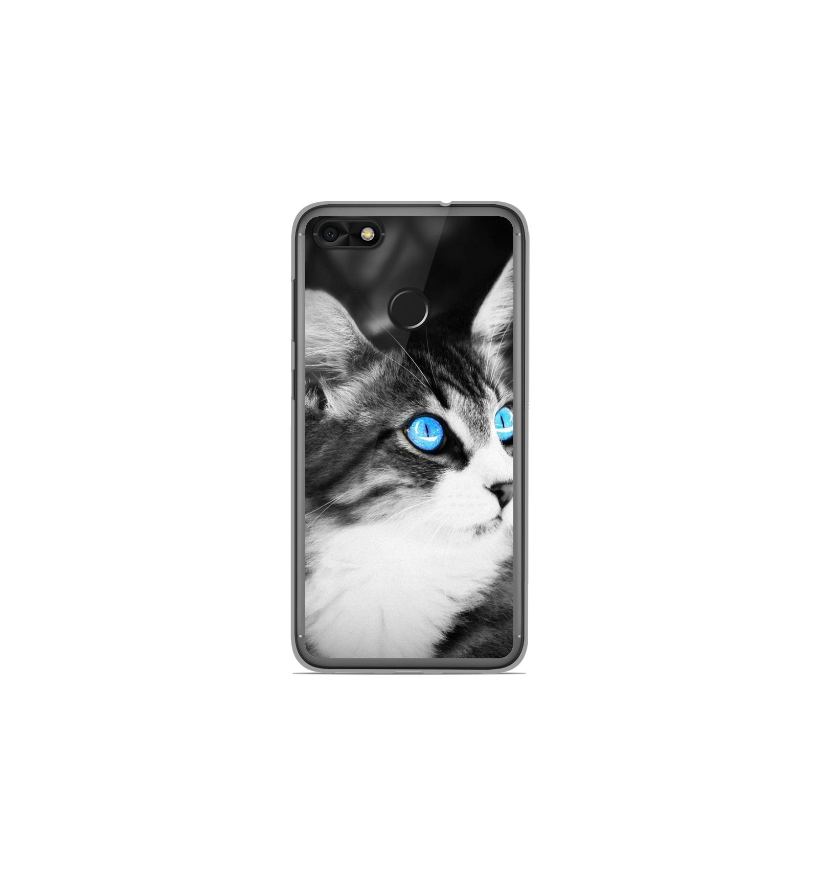 Coque en silicone Huawei Y6 Pro 2017 - Chat yeux bleu